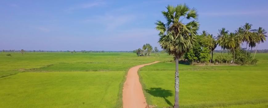 Raid Amazones Sri Lanka